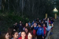 Pinares11